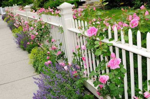 Pose d'une clôture : quelles règles à respecter ?
