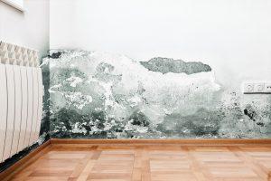 humidité-maison
